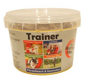 Wallitzer Mini Trainer mit Pferd